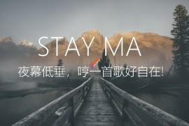 WordPress精品主题-Stay主题