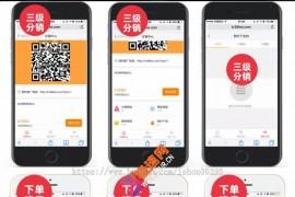 2021高级发卡系统+个人分站+免签付app+分销+会员积分商城+6套模板+伯乐pc和wap端